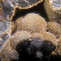 Gratonite Jordanite Geocronite & Sphalerite