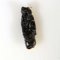 Native Indium