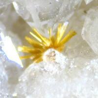 Cacoxenite