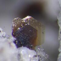 Warwickite Tridymite & Fluorophlogopite