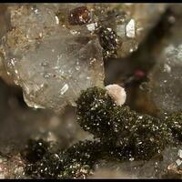 Cobaltaustinite Picropharmacolite Spherocobaltite & Quartz