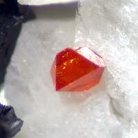 Pyrochlore Katophorite & Britholite
