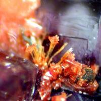 Xenotime Zircon & Fluorite