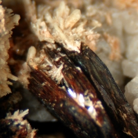 Niobophyllite & Zircon