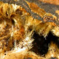 Kapundaite & Natrodufrénite