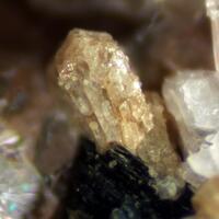 Zircon Albite & Babingtonite