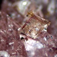 Leucophosphite Hureaulite Mitridatite & Jahnsite