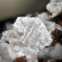 Zektzerite Pyrochlore & Aegirine