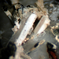 Churchite-(Y) & Niobophyllite