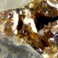 Segnitite & Lepidocrocite