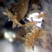 Aeschynite-(Y) & Quartz