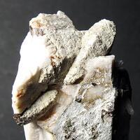 Muscovite Psm Parisite-(Ce) & Orthoclase