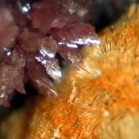 Meurigite-K & Leucophosphite
