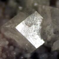 Fluellite & Variscite