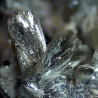 Zanazziite & Pyrite