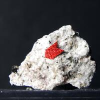 Mineralservice: 18 Nov - 25 Nov 2020