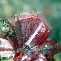 Mineralservice: 10 Jan - 17 Jan 2021