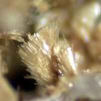 Whiteite Natrodufrénite & Hureaulite