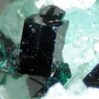 Clinoatacamite