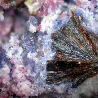 Phosphosiderite Variscite & Frondelite