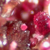 Leucophosphite Strengite & Mitridatite