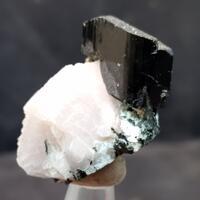 Actinolite With Albite