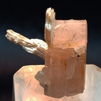 Apatite With Muscovite