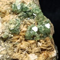 Demantoid With Wollastonite