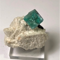 Fluorite & Tourmaline On Feldspar