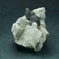 Magnetite On Microcline