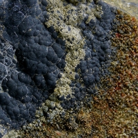 Uraninite On Quartz Var Eisenkiesel