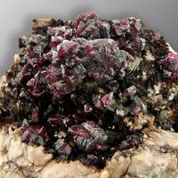Gambusino Minerals: 13 Jun - 20 Jun 2021