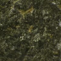 Potassic-chloro-hastingsite