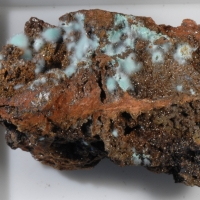 Loranth Minerals Seller Page III