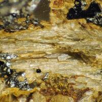 Proto-ferro-suenoite