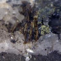 Vanadiocarpholite