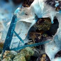 Langite & Carbonatecyanotrichite