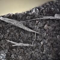 Ligurian Minerals: 20 Nov - 27 Nov 2020