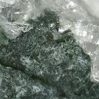 Potassic-leakeite
