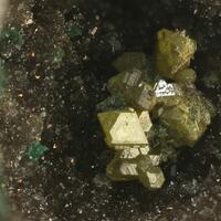 Chlorargyrite