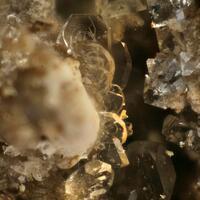 Boussingaultite & Tschermigite