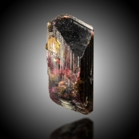 Tourmaline Var Liddicoatite With Londonite