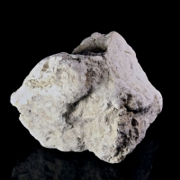 Anthoinite