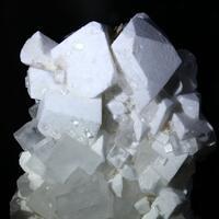 Leonite Psm Picromerite