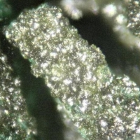 Vésigniéite & Malachite Psm Azurite