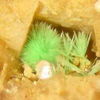 Uravan Minerals: 09 Dec - 16 Dec 2018