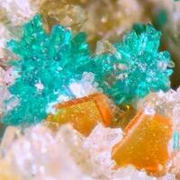 Dioptase Wulfenite & Fornacite