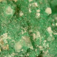 Brochantite & Gypsum