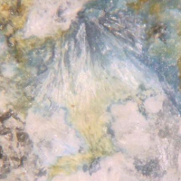 Uravan Minerals: 14 Jul - 21 Jul 2021