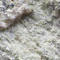 Bismite